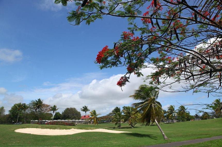 Les Villas à 30 m du Golf de Saint François et les pieds dans le lagon de Guadeloupe