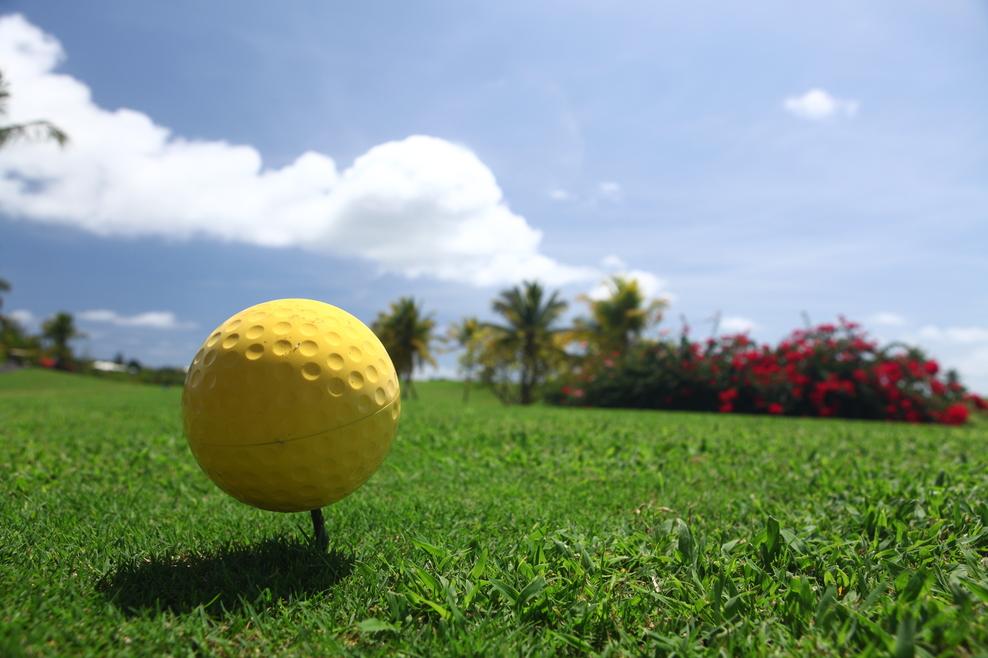 Le Golf de Saint François où va se dérouler Allianz Golf Tour 2011 Open de Saint-François Guadeloupe