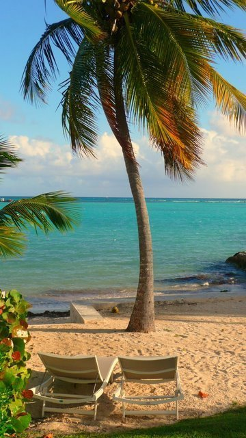 ----------------  Nouvelle Année en Guadeloupe, Nouvelle Villa  ------------------