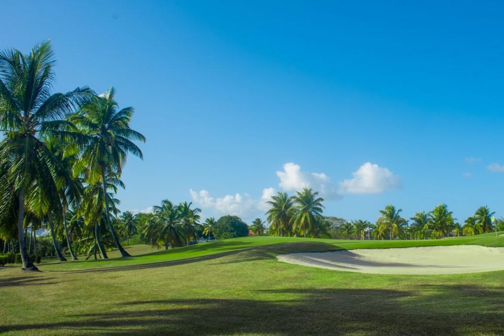 Le golf de Saint François en Guadeloupe