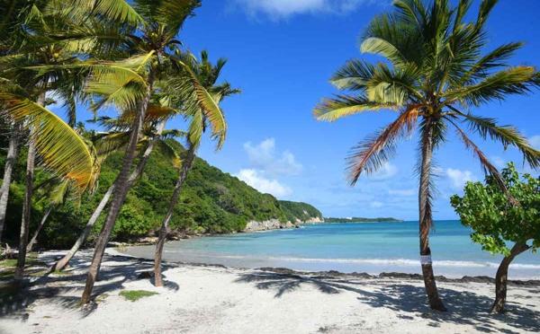 Quand aller en Guadeloupe ?