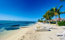 Luxury Villas in the Caribbean in Guadeloupe, feet in the water, 4-6 suites, spa and private pool