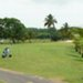 open golf st francois guadeloupe