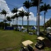 Open de golf Guadeloupe, le green