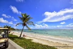 Plage des Raisins Clairs Guadeloupe avec la voiture électrique